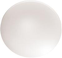Потолочный светильник Sonex Simple 3017/CL -