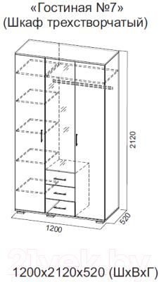 Шкаф Просто Хорошая Мебель Гостиная Ж №7 / 00-00046374 (дуб венге/ясень анкор светлый)