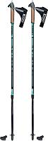 Палки для скандинавской ходьбы Masters Training / 01N0619 -