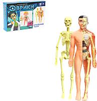 Набор для опытов Эврики Строение тела / 2772939 -