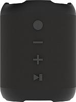 Портативная колонка Ritmix SP-290B Black -