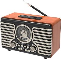 Радиоприемник Ritmix RPR-090 Gold -