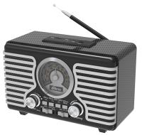 Радиоприемник Ritmix RPR-095 Silver -