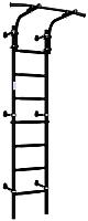 Детский спортивный комплекс Romana S9 01.21.7.06.410.04.00-01 (черный матовый) -