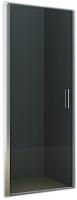 Душевая дверь Riho Novik Z101 90 / GZ1090000 (хром/прозрачное стекло) -
