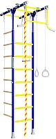 Детский спортивный комплекс Romana R1 01.20.7.06.490.01.00-08 (синяя слива) -