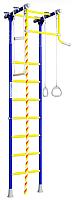 Детский спортивный комплекс Romana R2 01.20.7.06.490.02.00-11 (синяя слива) -