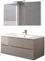 Комплект мебели для ванной Riho Porto SET 10 / FPO100DP4DP4S10 (серый) -