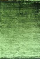 Ковер Adarsh Exports Tencel Plain / GREEN-9117 (1.2x1.7) -