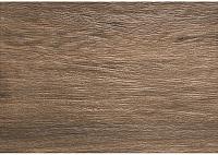Плитка Tubadzin S-Amazonia Braz (250x360) -