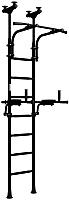 Детский спортивный комплекс Romana R10 01.20.7.06.410.04.00-02 (черный матовый) -