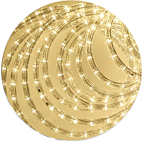 Светодиодный шнур (дюралайт) ETP LRR-3W (20м, теплый белый) -