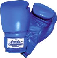 Боксерские перчатки Romana ДМФ-МК-01.70.04 -