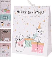 Набор пакетов подарочных Белбогемия APF464340 / 86217 (6шт) -