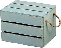 Ящик для хранения Белэкспоформ 1801 (фисташковый) -