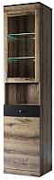 Шкаф-пенал с витриной Anrex Jagger 1V1D1SN (дуб монастырский/черный) -