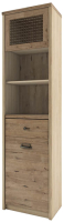 Шкаф-пенал с витриной Anrex Diesel 1V1D1S2N/D1 (дуб мадура/веллингтон) -