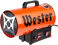 Тепловая пушка Wester TG-12000 (615345) -