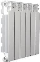 Радиатор алюминиевый Fondital Aleternum B4 350/100 (V70101410) -