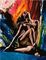 Картина по номерам Picasso Сила эмоции (PC4050547) -