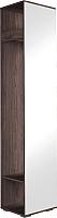 Шкаф-пенал Астрид Мебель Бриз-3 с зеркалом / ЦРК.БРЗ.03 (анкор темный/анкор белый) -