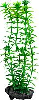 Декорация для аквариума Tetra DecoArt Plant Anacharis (M) -