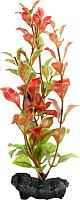 Декорация для аквариума Tetra DecoArt Plant Red Ludwigia (M) -