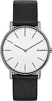 Часы наручные мужские Skagen SKW6419 -