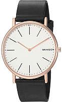 Часы наручные мужские Skagen SKW6430 -