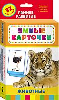 Развивающие карточки Росмэн Животные -