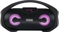 Портативная колонка Telefunken TF-PS1260B (черный) -