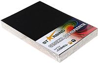 Обложки для переплета Starbind A4 / CCGA4Bk250SB (100шт, глянец черный) -
