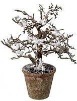 Искусственное растение Gasper 1119500-44 (коричневый/заснеженный) -