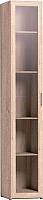 Шкаф-пенал с витриной Глазов Регата 14 (дуб сонома) -