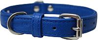 Ошейник Angel Pet Alpine 41017/AG (голубой) -