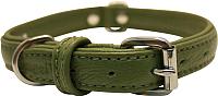 Ошейник Angel Pet Alpine 41024/AG (зеленый) -