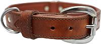 Ошейник Angel Pet Dallas 11015/AG (коричневый) -