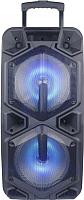 Портативная колонка Eltronic EL-1010 Diamond -