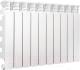 Радиатор алюминиевый Fondital Al Ardente C2 500/100 (V63903406) -