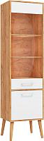 Шкаф-пенал с витриной ФорестДекоГрупп Сканди комбинированный / ГН 028-02 (дуб крафт/белый) -