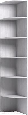 Угловое окончание для шкафа Глазов Home 44 (ясень анкор светлый)