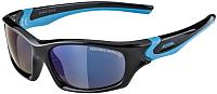 Очки солнцезащитные Alpina Sports Flexxy Teen CMB / A84963-31 (черный/голубой) -
