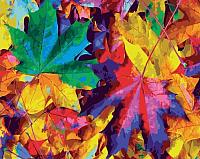 Картина по номерам Picasso Осенний калейдоскоп (PC4050603) -