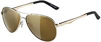 Очки солнцезащитные Alpina Sports A 107 CMGO / A85173-01 (золото) -