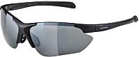 Очки солнцезащитные Alpina Sports Jalix CM / A85603-31 (черный) -