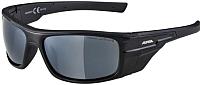 Очки солнцезащитные Alpina Sports Chill Ice CM+ / A85620-31 (черный) -