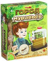 Набор для опытов Bondibon Город муравьев / ВВ1549 -