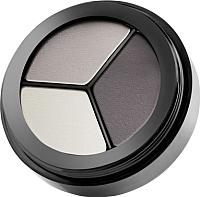Палетка теней для век Paese Luxus Eye Shadows 101 -