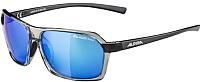 Очки солнцезащитные Alpina Sports Finety PMB / A86205-25 (серый) -