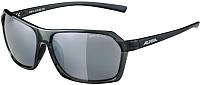Очки солнцезащитные Alpina Sports Finety CM / A86143-25 (Smoke) -